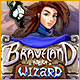 Braveland Wizard Game