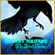 Mystery Solitaire: The Black Raven Game