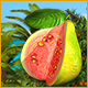 Dream Fruit Farm: Paradise Island Game