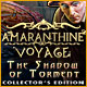 Download Amaranthine Voyage: The Shadow of Torment Collector's Edition game