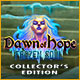 Download Dawn of Hope: The Frozen Soul Collector's Edition game