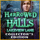 Download Harrowed Halls: Lakeview Lane Collector's Edition game