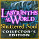 Download Labyrinths of the World: Shattered Soul Collector's Edition game