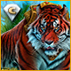 Download Labyrinths of the World: The Wild Side Collector's Edition game