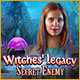 Witches' Legacy: Secret Enemy Game