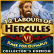 Download 12 Labours of Hercules VI: Race for Olympus Collector's Edition game