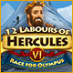 Download 12 Labours of Hercules VI: Race for Olympus game
