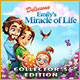 Download Delicious: Emily's Miracle of Life Collector's Edition game