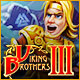 Download Viking Brothers 3 game