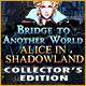 Download Bridge to Another World: Alice in Shadowland Collector's Edition game